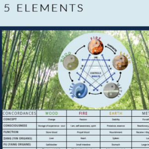 Wall chart - Five elements order online