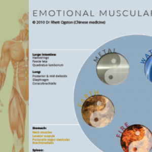 Wall chart - Emotional muscular release - order online