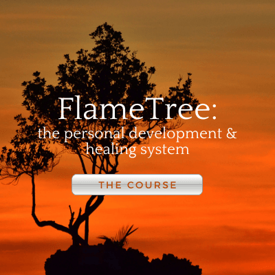 Learn Energy medicine courses online FlameTree personal development and healing course